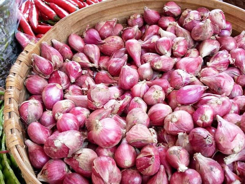 bawang merah impor