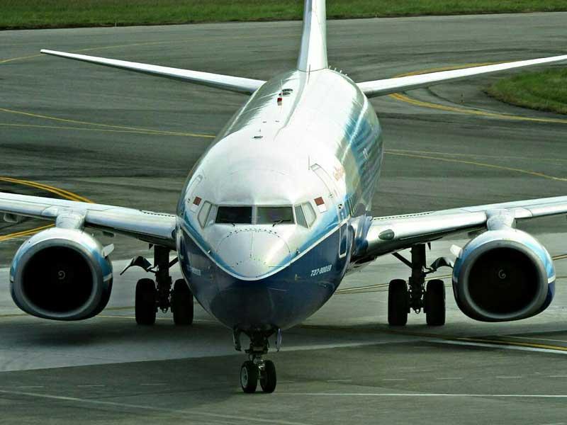 penerbangan domestik