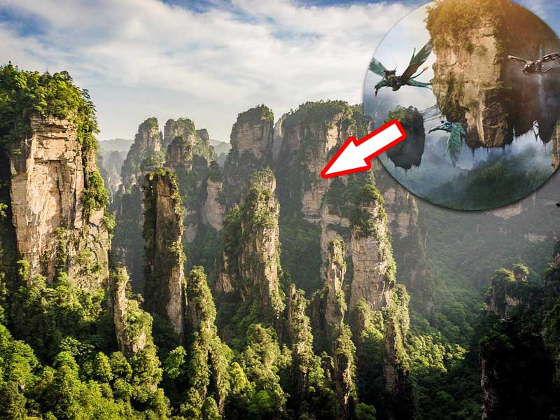'Gunung Melayang' di Film Avatar Ternyata Idenya Dari Tempat Ini