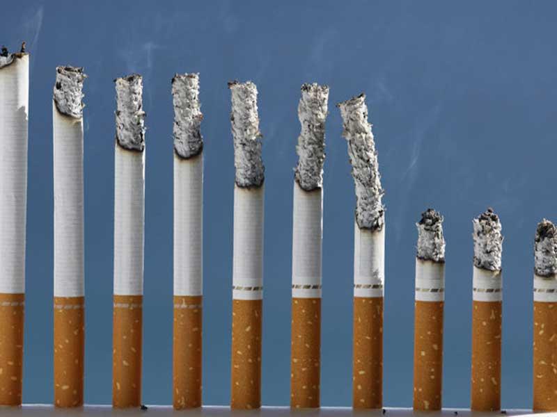 rokok ternyata