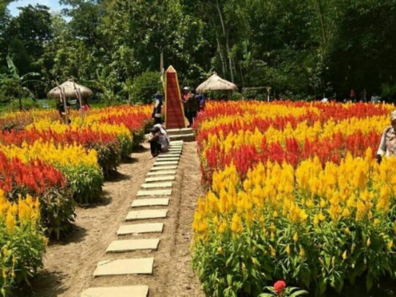 Taman Bunga Ragil Kuning