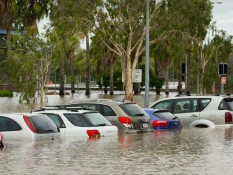 Banjir Australia Buaya dan Ular Bermunculan