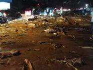 Evakuasi Banjir Bandang Sentani Diintensifkan, 50 Orang Meninggal Dunia