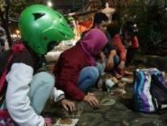Di Jogja Muncul Komunitas Peduli Kucing Pasar