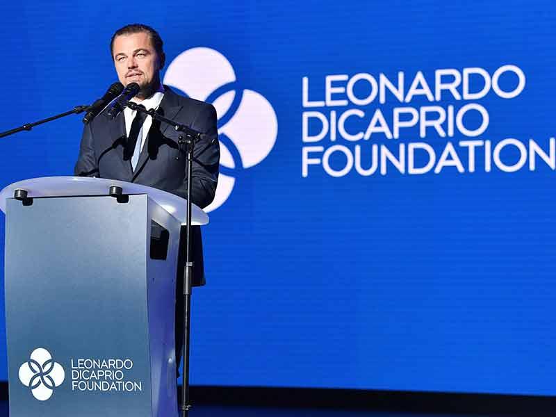 Lembaga Milik Leonardo Dicaprio Sumbangkan Dana US$ 5 Juta Untuk Hutan Amazon