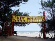 Pantai Parangtritis Jadi Percontohan Penerapan New Normal Pariwisata