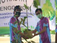 Dies Natalis ke-63 UNDIP Tanam 1.063 Pohon di Hutan Penggaron