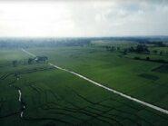 Bukan di Ubud Bali, Keindahan Hamparan Persawahan Oebud Van JogjaAda Di Kulonprogo